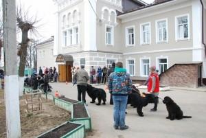 Дмитровский детский дом- интернат